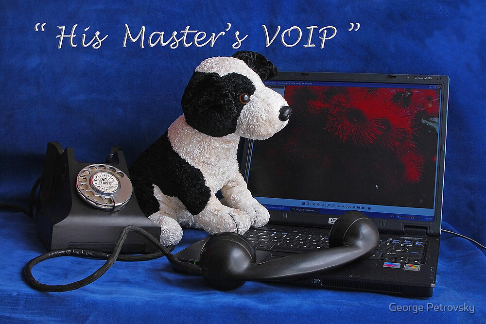 His Master's VOIP by George Petrovsky
