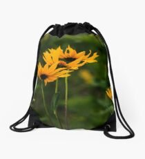 Uplifted Drawstring Bag