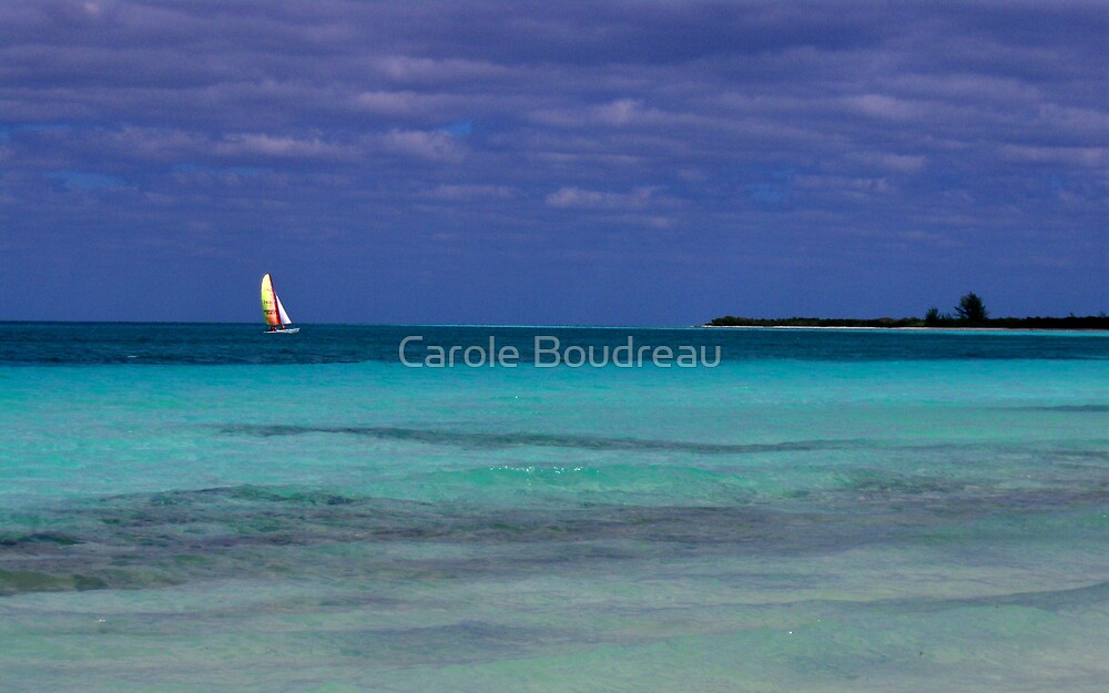 Lonely Saillor by Carole Boudreau