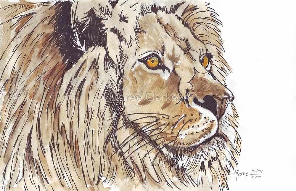 Dominion (African Lion) by Maree Clarkson