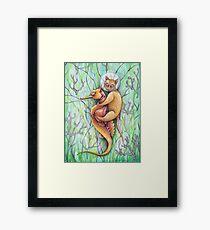 seahorse catfish  Framed Print