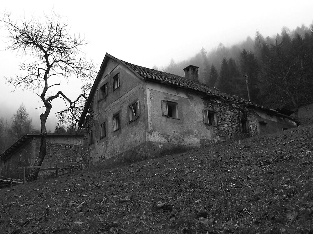 The mysterious house at Ginselberg  by Gerhard Brandhofer