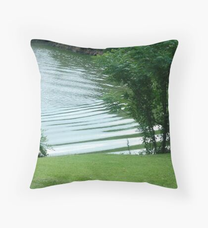 Regaining my connection Throw Pillow