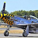 Taxi Mustang by Bob Moore