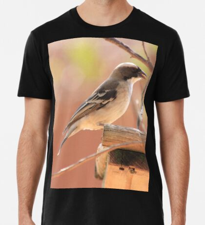 White-browed Sparrow Weaver (Plocepasser mahali) Premium T-Shirt
