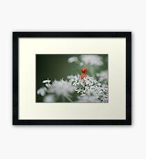 Raw Bug Love Framed Print