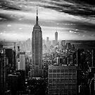 New York City Skyline by Neli Dimitrova