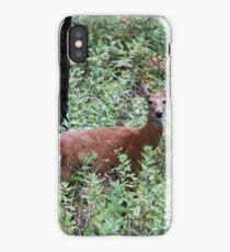 Whitetailed Doe iPhone Case/Skin