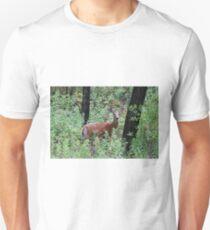 Whitetailed Doe T-Shirt