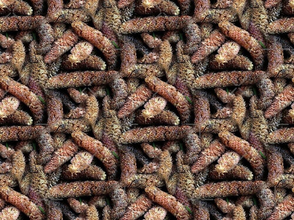 See da Cedar Cone-centration (pattern) by Yampimon