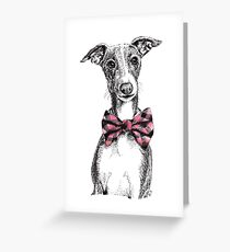 Italian Greyhound wearing a snazzy bow tie Greeting Card