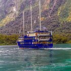 The Milford Mariner, Milford Sound, New Zealand by Elaine Teague