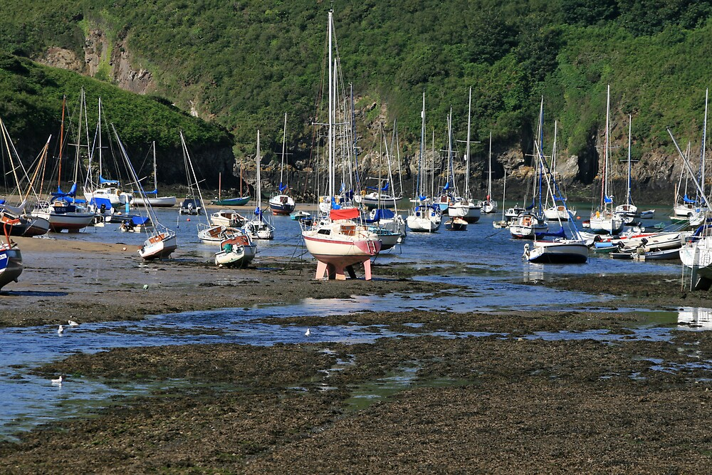 Solva Harbour at Low Tide by DRWilliams