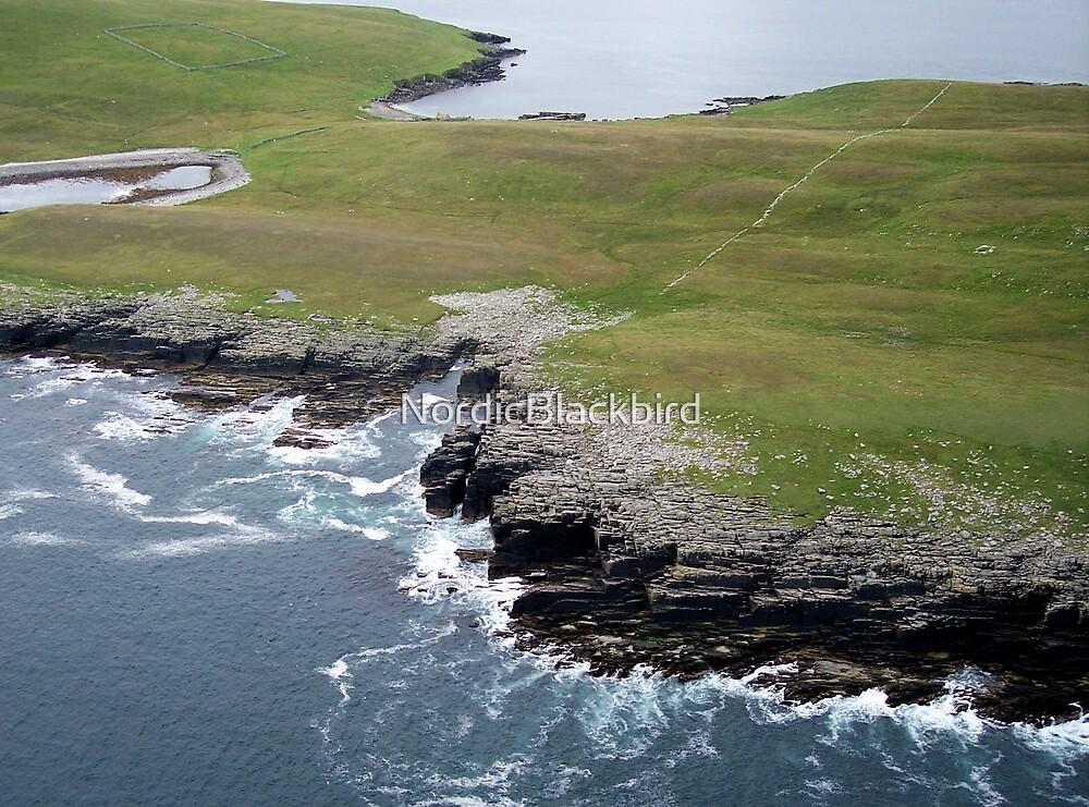 Approaching Mousa Isle  by NordicBlackbird