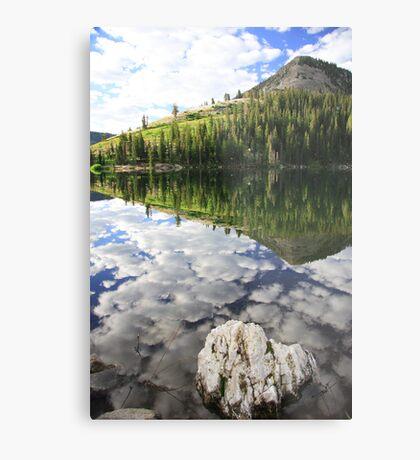 High Mountain Wilderness Metal Print