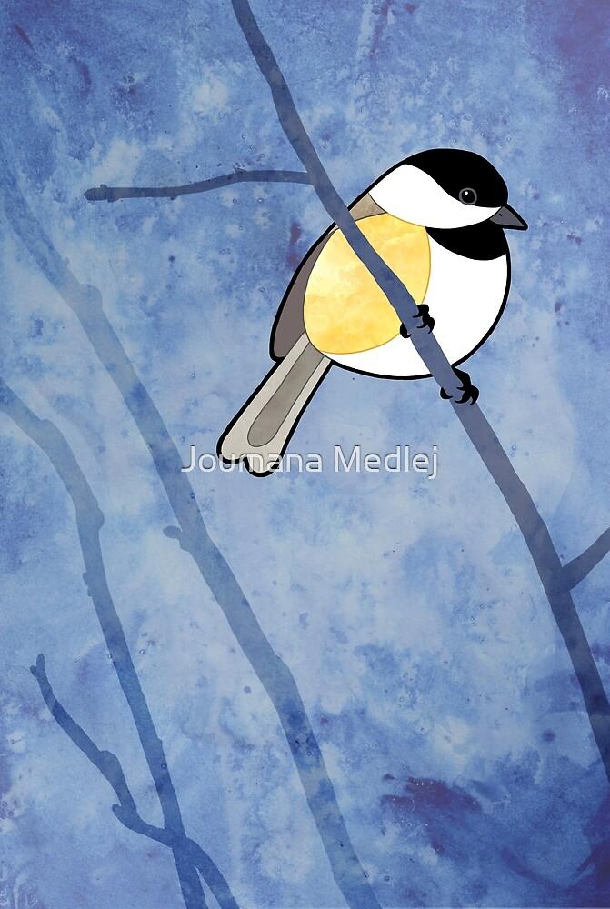 Black-capped Chickadee (Poecile atricapillus) by Joumana Medlej