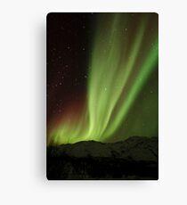 The Northern Light , Alaska USA.( Sold 8 image YAY )  Canvas Print
