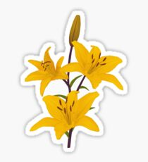 Yellow lilies on blue Sticker