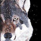Wolf Face by Luke Tomlinson
