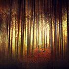 passage into the light by Dirk Wuestenhagen