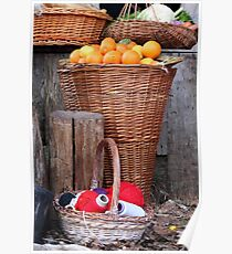 oranges and balls of wool Poster