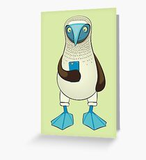 Blue-footed Booby with Phone Greeting Card