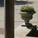 Stone Vase by FerrellCharles