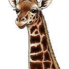 Rothschild's Giraffe by Lyndsey Green