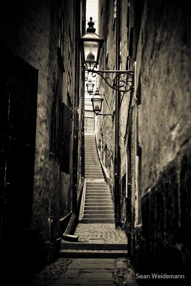 Copenhagen Alley by Sean Weidemann