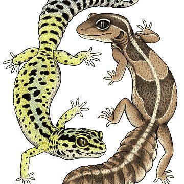 Geckos von lyndseygreen