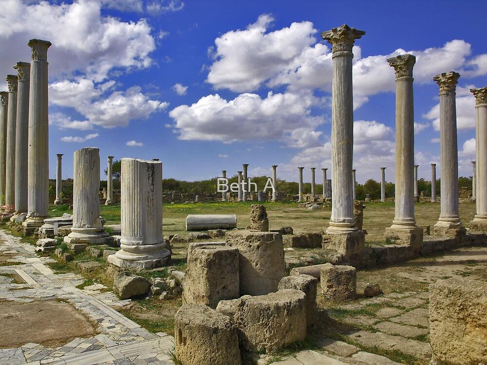 Salamis, Northern Cyprus by Beth A