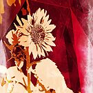 Extreme Editing Sunflower against Fence by Karirose