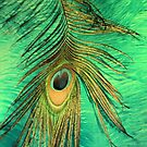 Eye Of A Peacock by SexyEyes69