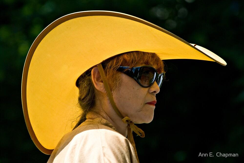 Amazing Hat by Ann E.  Chapman