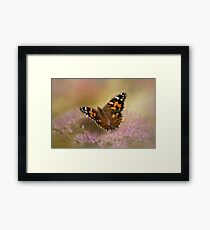 Painted Lady on Sedum Photography/Art Framed Print