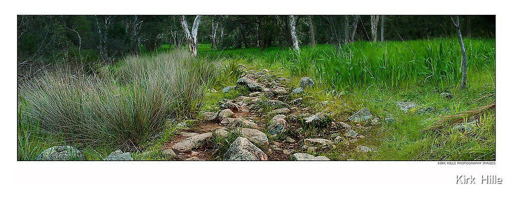 Rocky Path by Kirk  Hille