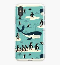 Whales, Penguins and other friends iPhone Case