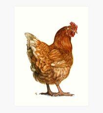 Red Hen Art Print