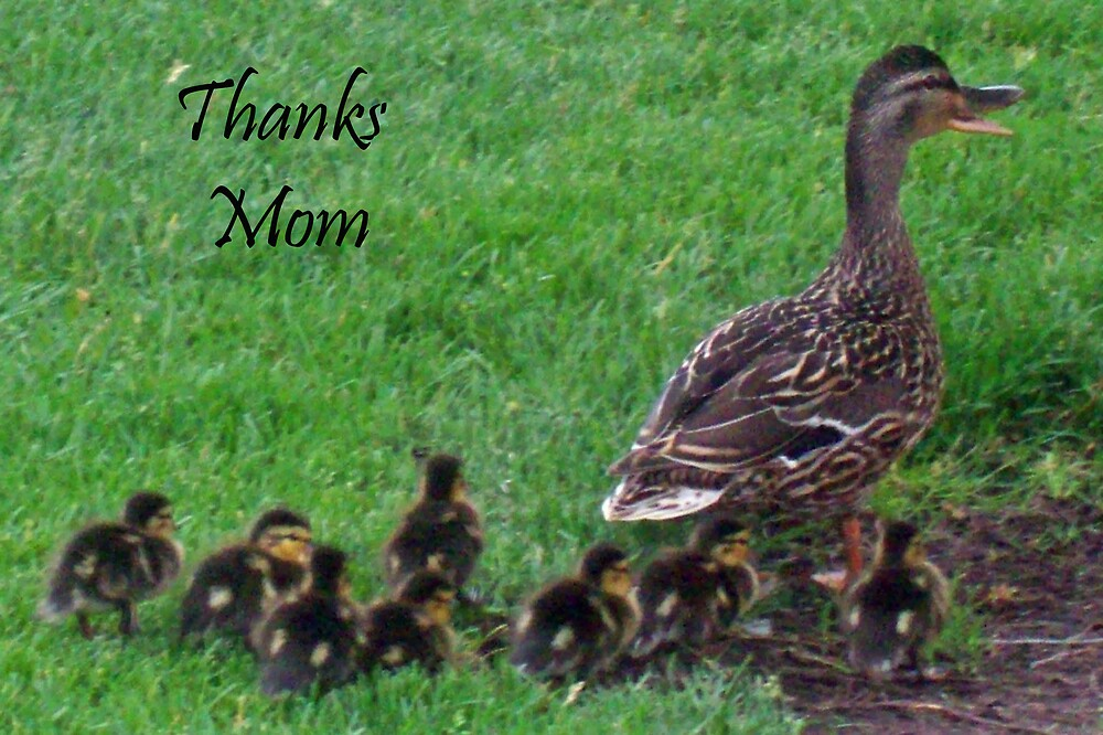 Thanks Mom  by Michelle BarlondSmith