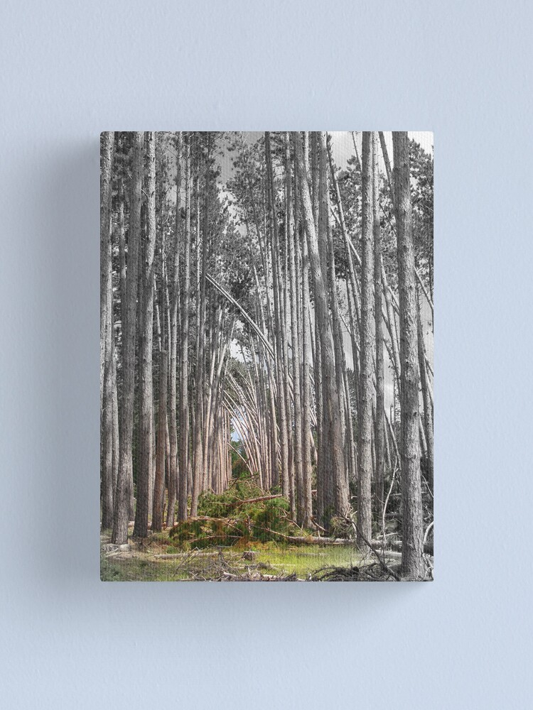 Alternate view of Character Canvas Print