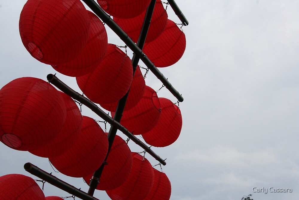 Japanese Lanterns by Carly Cassara