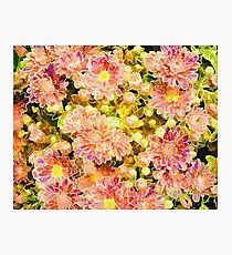 Abstract Floral 07 Photographic Print