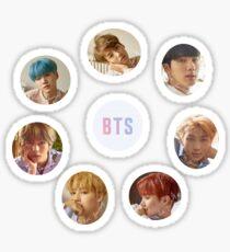 BTS Love Yourself Her Sticker Set (L version) Sticker