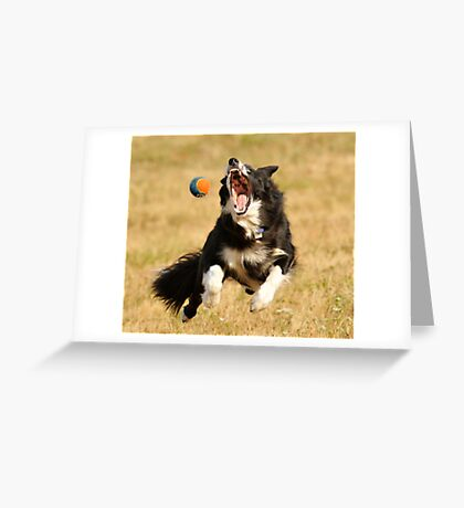 Fang Ball Greeting Card