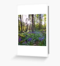 The Bluebells Northern Ireland Greeting Card