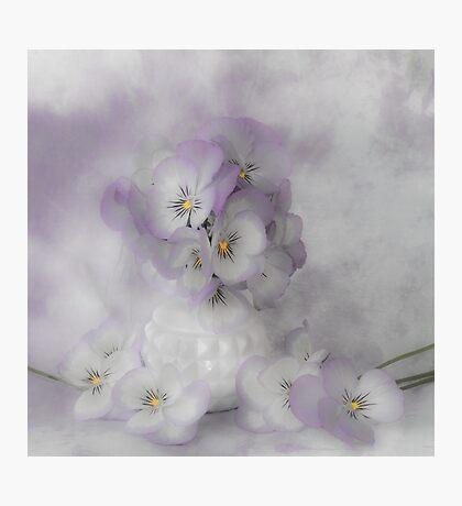 Pastel Pansies Still Life Photographic Print