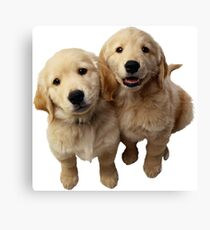 Puppies! Sale!!! Canvas Print