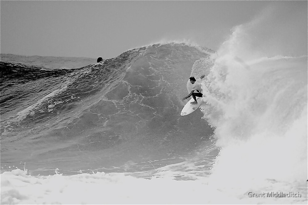 Snapper Gold Coast Australia by Grant Middleditch