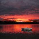 Beauty point Tasmania  by Glenn McLeary