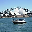 Sydney Opera House  by mikequigley